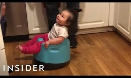 Baby Roomba Is The Best Hybrid Toy