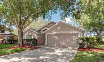17302 Summer Oak Lane, Clermont, FL 34711
