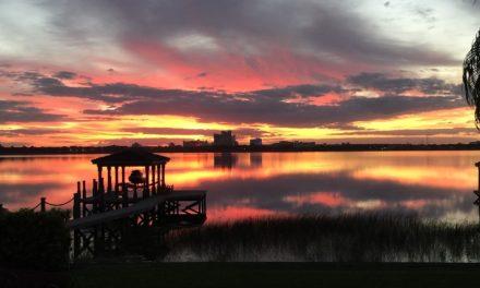8707 Southern Breeze Drive, Orlando, FL 32836