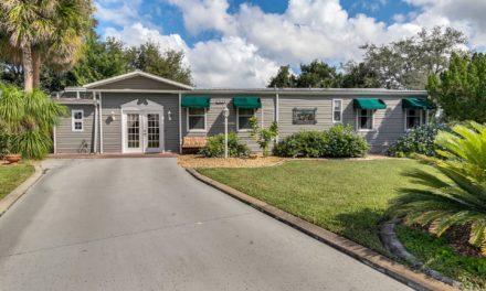 25228 Wild Heron, Leesburg, FL 34748