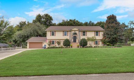 16017 Harbor Oaks Drive, Montverde, FL 34756