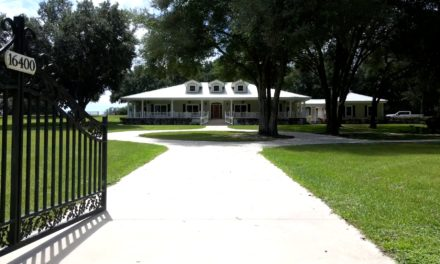 Branded16400 County Line Road, Umatilla, FL 32784