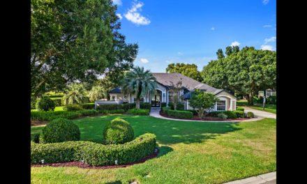 11365 Willow Gardens Drive, Windermere, FL 34786